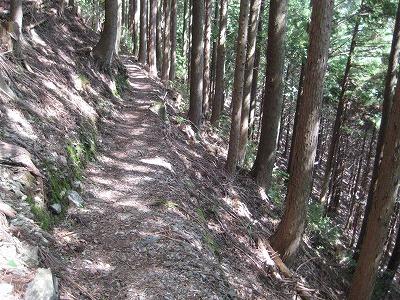 福養の滝への道